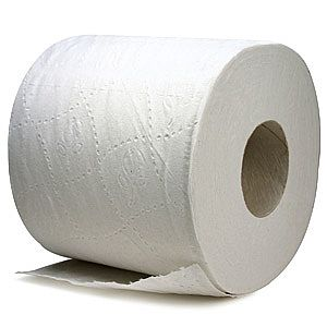 What is the circumference of a toilet paper roll